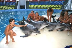 Naturists With Dolphins